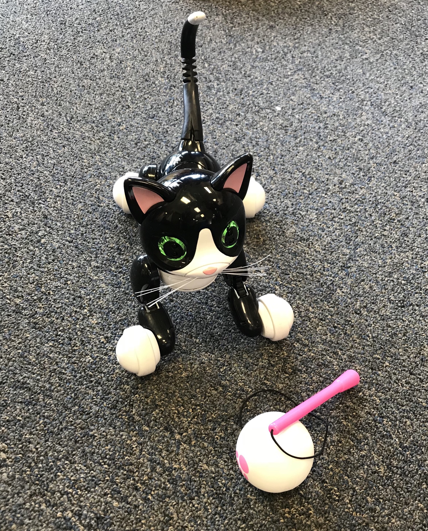Roblox Zoomer Kitty interactive cat with ball and charger.  Interactive:makes sounds, moves, follows ball.  NO SHIPPING-in store pick up only
