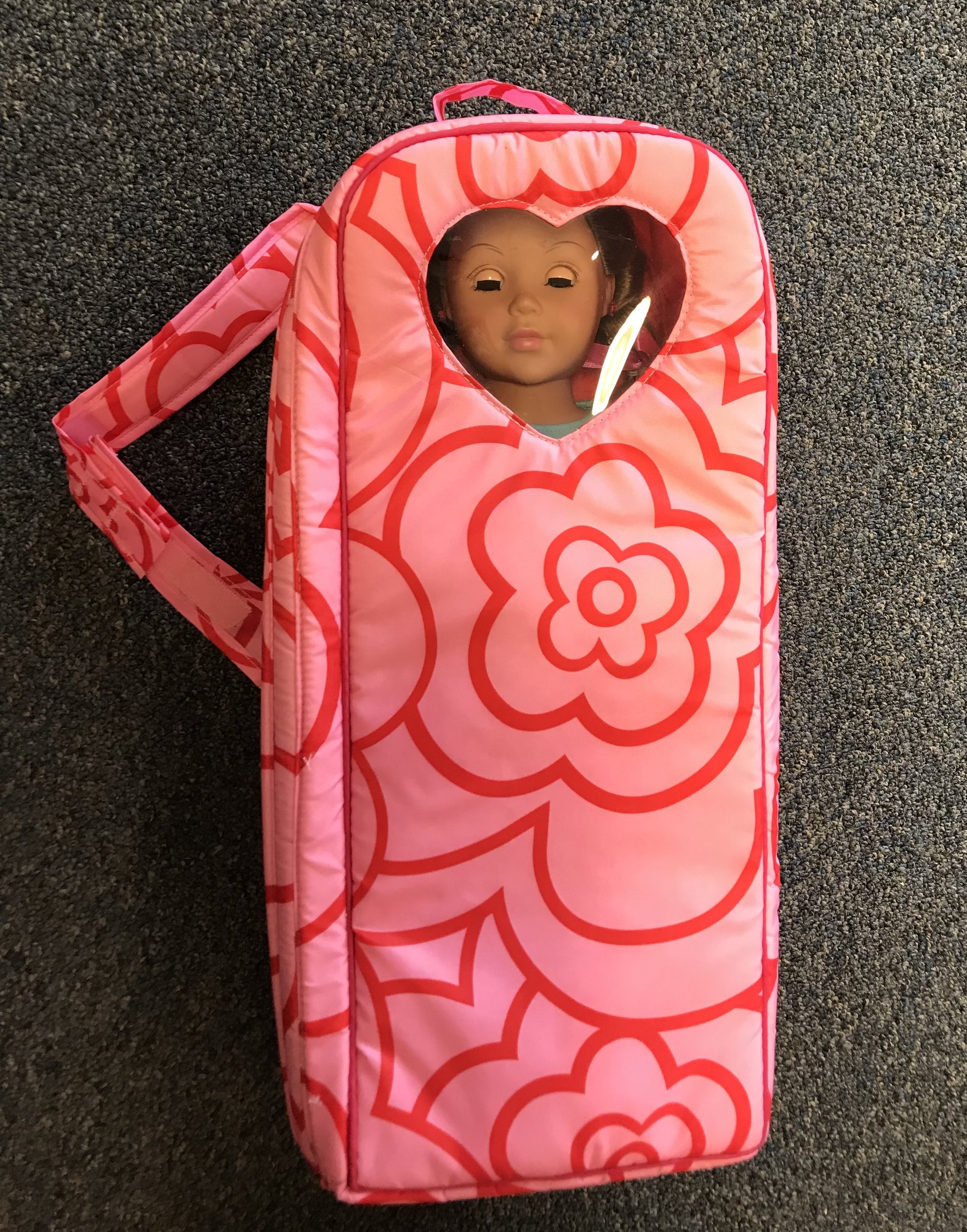 Our Gereration Doll W backpack type case and outfit.  Comes with a brush and dog.  Excellent condition. NO SHIPPING-in store pick up only.